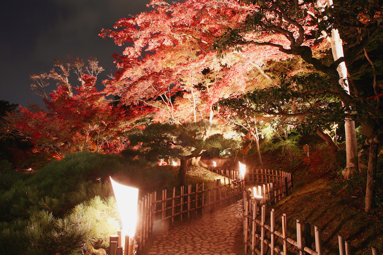 fallillumination_path