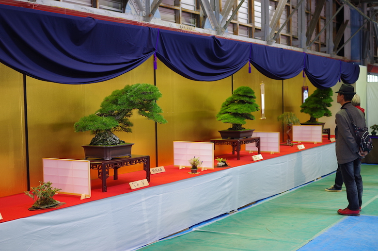 kokubunji_bonsai3