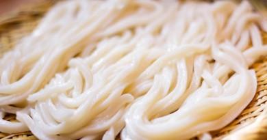 Sanuki Udon noodle