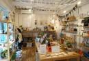 Variety Store Sanrinsha