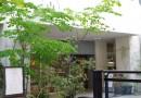 Machi no schule 963 – Enjoy local food in central Takamatsu
