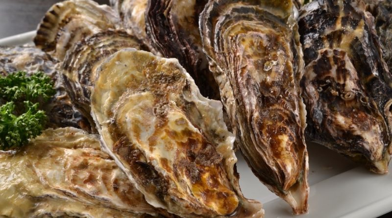 Only Winter Menu All-you-can-eat Grilled Oysters