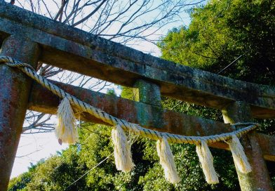 Silent and solemn – The Tawa shrine