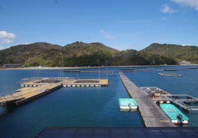Hiketa Adoike – The birthplace of hamachi aquaculture