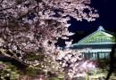 Spring Illumination – Ritsurin Garden