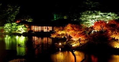 红叶 - 栗林公园 - 高松的景点