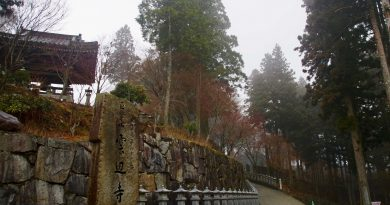 雾里云深不知处 只缘身在云边寺