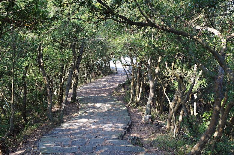 yashima_path