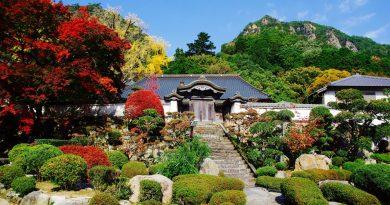 楓紅中的大窪寺