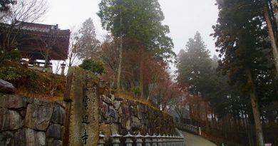 霧裡雲深不知處 只緣身在雲邊寺