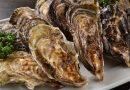 冬季獨有的美食饗宴 烤牡蠣吃到飽